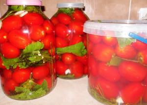 помидоры квашеные фото