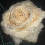 Роза для торта