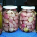 маринованный чеснок рецепт с фото