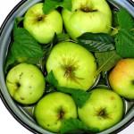 Моченые яблоки фото