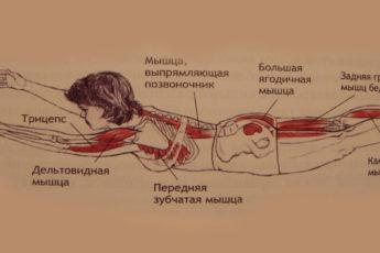 Избавься от болей в спине, улучши пищеварение и гормональный баланс! 1 простое упражнение на 5-8 минут